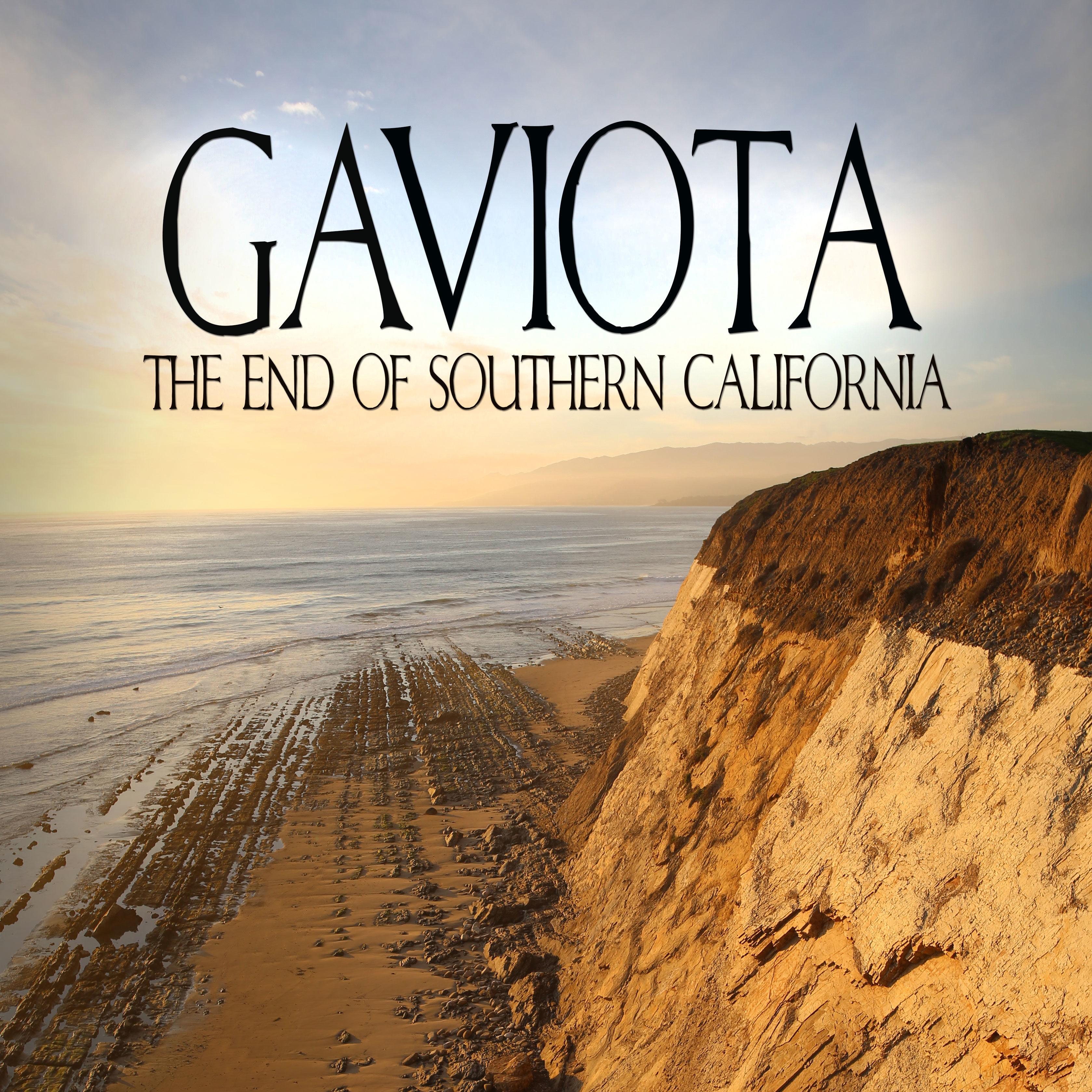 Gaviota Poster CROP E1494195054343