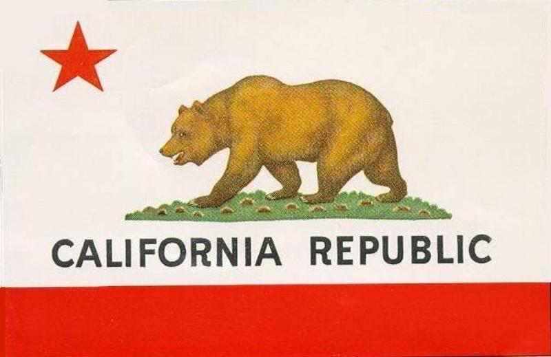 California Flag For Peter Alagona Event